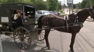 Amish Horse and Buggy Uber